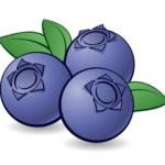 21-07-21 Prodej borůvek