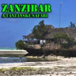 21-11-09 Beseda Zanzibar logo